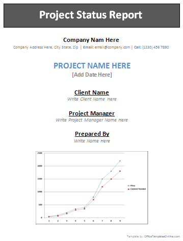 professional project report format selo l ink co