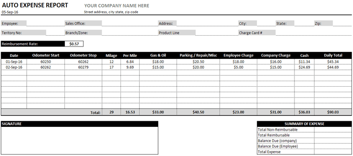 Auto Expense Report Created in MS Excel