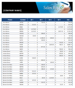 MS Excel Sales Report By Customers And Products