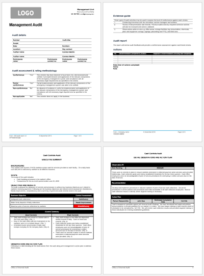 7 Audit Report Templates